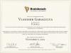 Flash5 Brainbench certificate